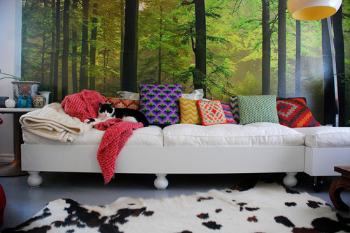 Cushions and rugs - and a cat!